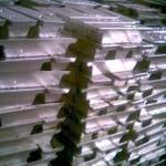 长时间直销锡锭电解锡 锡板 出售锡条锡锭报价 电解