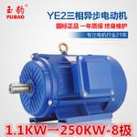 供应商供应YE2-8极1.1-250KW千瓦8P三相异