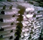 现货供应2#铅锭电解铅铅合金 出售铅条 铅锭报价