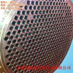 镍盘管|镍|朗锐晟钛镍设备