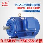 供应商供应YE2-6极0.55-250KW三相异步电动