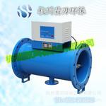 直销除垢器电子除垢仪DN150供应商现货供应